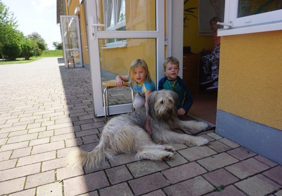 Tierischer Besuch während der Sommerferienbetreuung